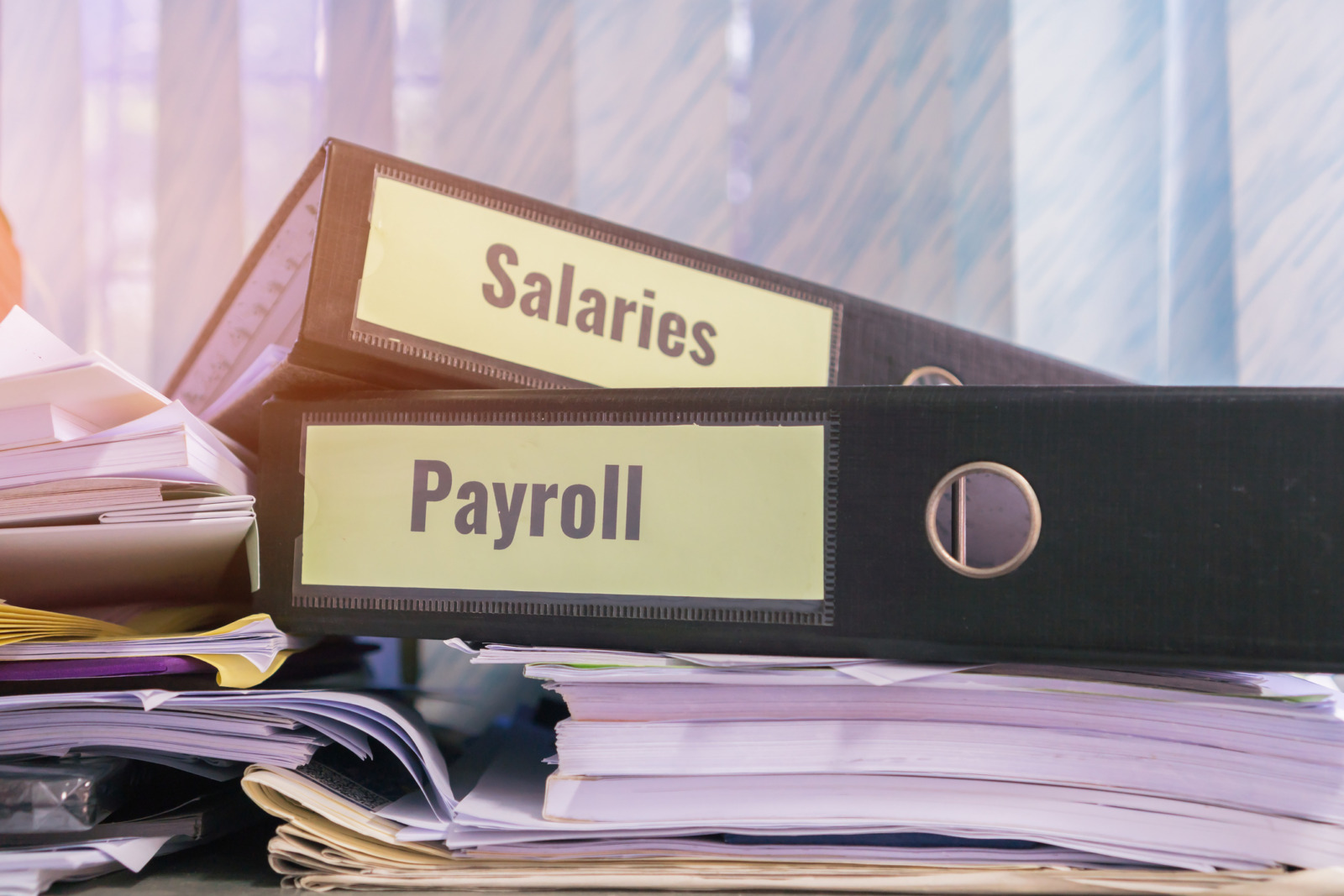 Choose a payroll technology that allows you to easily access and gain insights from your data.
