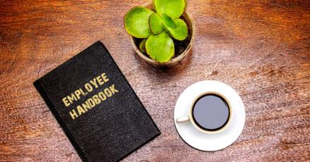 Creating an Employee Handbook from Scratch