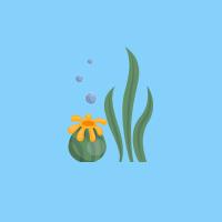 plants diving image
